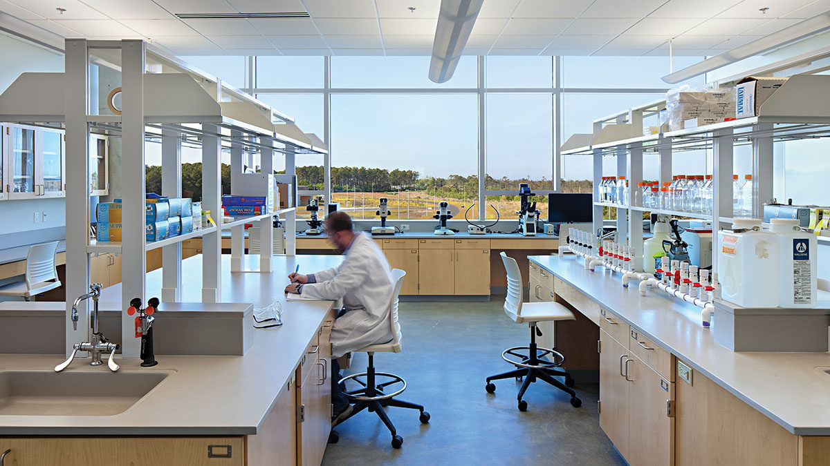 A lab at Coastal Studies Institute in Wanchese, North Carolina; Architect: Clark Nexsen
